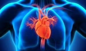 Κατάφεραν να αναγεννήσουν κύτταρα της καρδιάς μετά από έμφραγμα