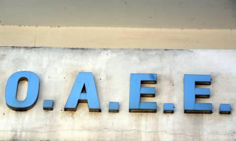 Σχέδιο για διασύνδεση επιμελητηρίων - ΟΑΕΕ