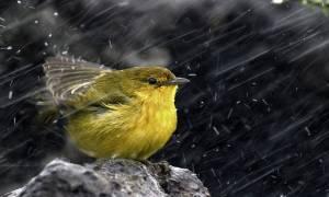 Κύπρος: Πάσχα με βροχές και χιόνια