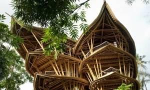 Πανέμορφα σπίτια που κατασκευάζονται από μπαμπού!