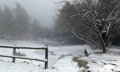 Απαραίτητες οι αλυσίδες στη λεωφόρο Πάρνηθος, λόγω του χιονιού