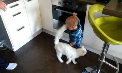 Παιδάκι παίζει με το φούρνο μπροστά στους γονείς του κι η γάτα το προστατεύει