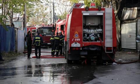Φλώρινα: Καταστροφές δεκάδων χιλιάδων ευρώ από 35χρονο εμπρηστή