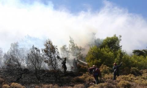 Ιεράπετρα: Ολονύχτια μάχη με τις φλόγες