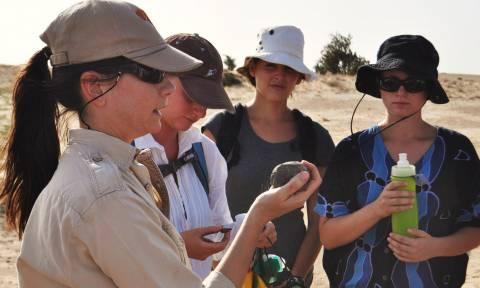 Ανακαλύφθηκαν λίθινα εργαλία ηλικίας 3,3 εκατ. ετών