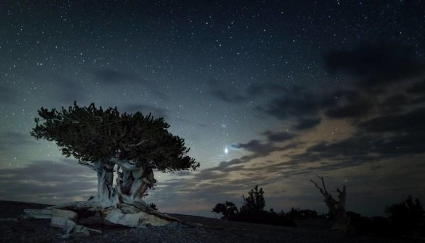 Μια βόλτα στα Εθνικά Πάρκα των ΗΠΑ (photos)