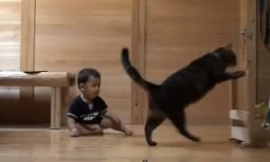 Γάτα μαθαίνει σε μωράκι να… περπατά! (video)