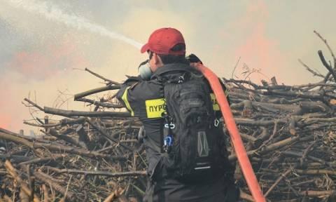 Χανιά: Ξεκίνησε για να κάψει ξερόκλαδα και προκάλεσε μεγάλη φωτιά