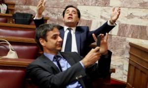 Θέατρο σκιών: Ο Άδωνις ουρλιάζει κι ο Μητσοτάκης βγάζει selfie