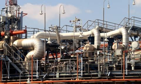 Ρωσία – Αργεντινή συμφώνησαν για φυσικό αέριο και πυρηνικό εργοστάσιο