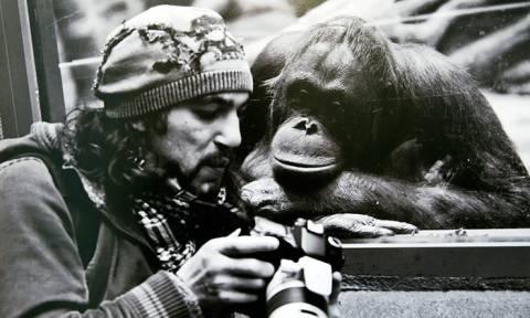 Φωτογράφοι σε επικίνδυνες… αποστολές! (Photos)