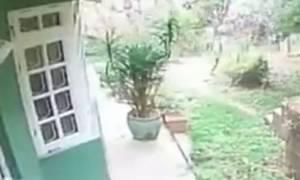 Η στιγμή του φονικού σεισμού στο Νεπάλ (videos)