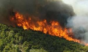 Σάμος: Ύφεση παρουσιάζει η πυρκαγιά στο Καρλόβασι