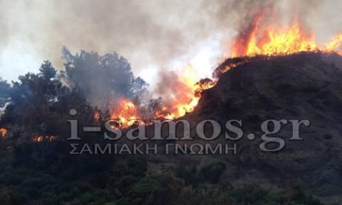 Σε επιφυλακή οι Αρχές της Σάμου λόγω της φωτιάς (photos&video)
