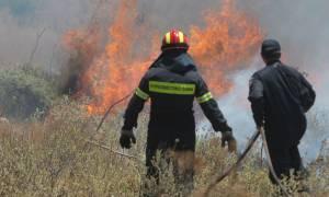 Υπό μερικό έλεγχο η μεγάλη φωτιά στο Ρέθυμνο