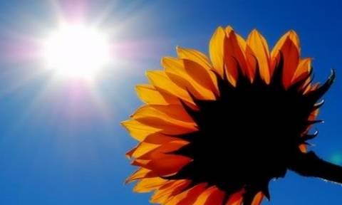 Σε επίπεδα καλοκαιριού η θερμοκρασία - Μίνι καύσωνας την Πέμπτη