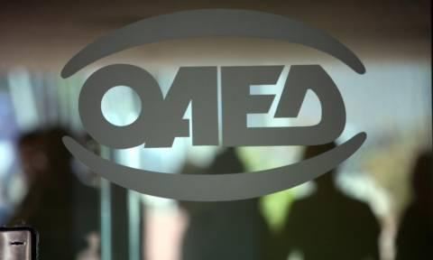 ΟΑΕΔ: Εντός του μήνα οι αιτήσεις για 23.000 ανέργους σε τουρισμό, λιανεμπόριο