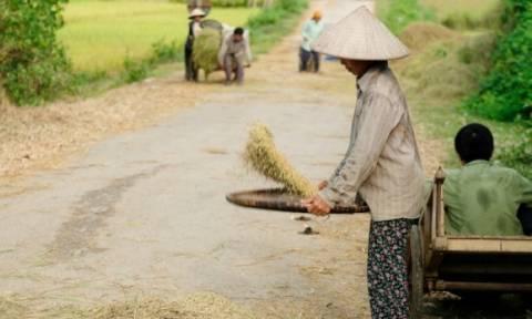 """Οι τρομακτικές συνέπειες του """"Πορτοκαλί Παράγοντα"""" στιγματίζουν ακόμα το Βιετνάμ"""