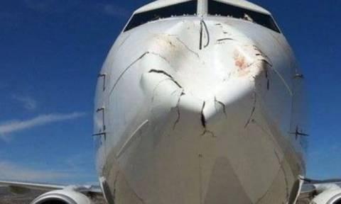 Εικόνες που σοκάρουν: Σμήνος πουλιών συγκρούστηκε με αεροπλάνο