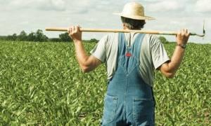 Παρατείνεται η προθεσμία για την υποβολή δηλώσεων των ΟΣΔΕΕ από τους αγρότες