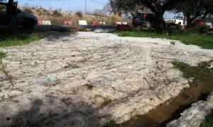 Πελοπόννησος: Καταστροφές από χαλαζόπτωση σε Αρκαδία και Μεσσηνία