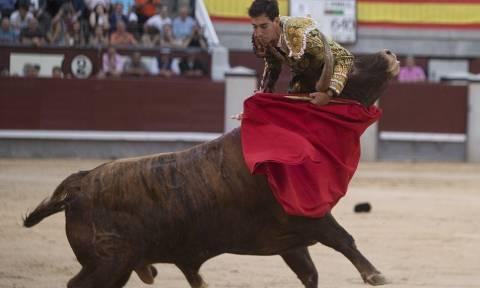 Η εκδίκηση του ταύρου: Έβγαλε νοκ άουτ τον ταυρομάχο τρυπώντας τον στο λαιμό (video & pics)