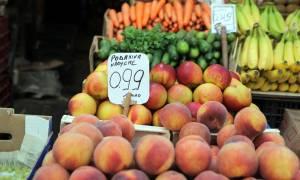 Η Ρωσία «χαλαρώνει» την απαγόρευση εισαγωγής ελληνικών προϊόντων