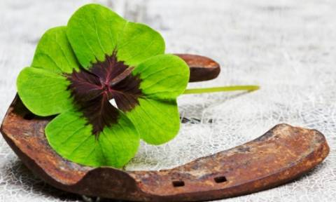 Οι τυχερές και όμορφες στιγμές της ημέρας: Τετάρτη 20 Μαΐου