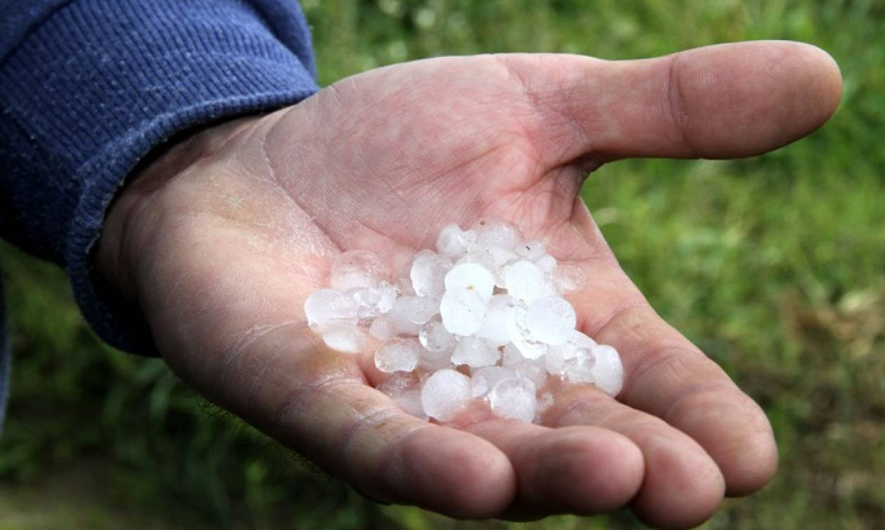 Καταστροφές σε καλλιέργειες από τη χαλαζόπτωση σε Φθιώτιδα, Καστοριά και Κοζάνη