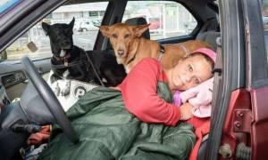 Βρετανία: Έμεινε άστεγη γιατί αρνήθηκε να εγκαταλείψει τα σκυλιά της (video & pics)