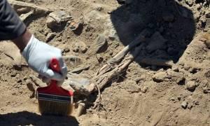 Ιράκ: Περίπου 470 σοροί βρέθηκαν σε ομαδικούς τάφους στο Τικρίτ