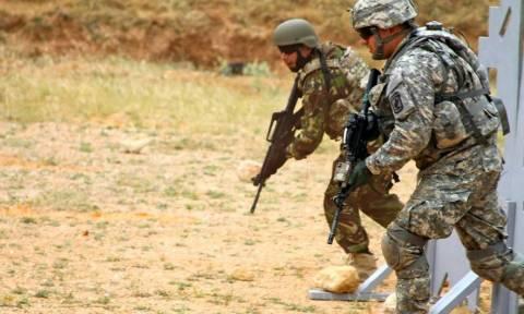 Συνεκπαίδευση της 31ης ΜΕΕΔ με την 173η Αερομεταφερόμενη Ταξιαρχία των ΗΠΑ (pics)