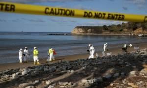 Καλιφόρνια: Κλειστές οι παραλίες εξαιτίας πετρελαιοκηλίδας αγνώστου προέλευσης