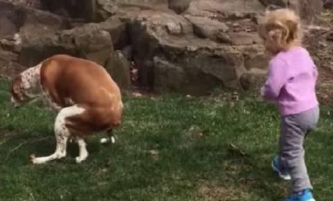 Αυτό το μωράκι πλησιάσε το σκύλο του και έκανε κάτι που κανείς δεν περίμενε
