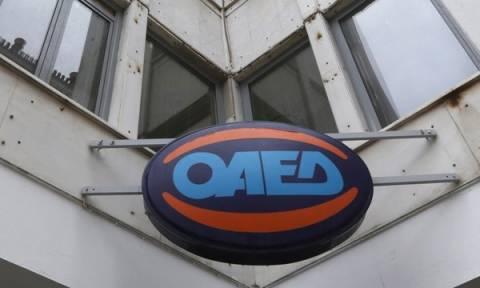 ΟΑΕΔ: Οι προσωρινοί πίνακες με τις 32.433 προσλήψεις ανέργων στους Δήμους