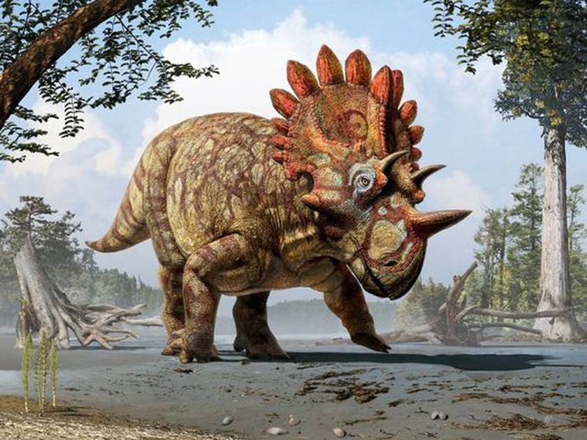 Ανακάλυψαν απολίθωμα αλλόκοτου δεινοσαύρου! (photo)