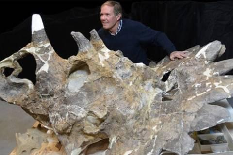 Ο πιο αλλόκοτος δεινόσαυρος που ανακαλύφθηκε ποτέ (photo)