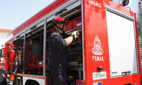 Συναγερμός στην Πυροσβεστική - Πυρκαγιά στο Γραμματικό