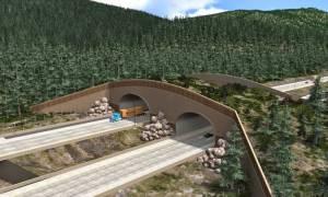 ΗΠΑ: Μια γέφυρα… για άγρια ζώα κατασκευάζει η πολιτεία της Ουάσιγκτον