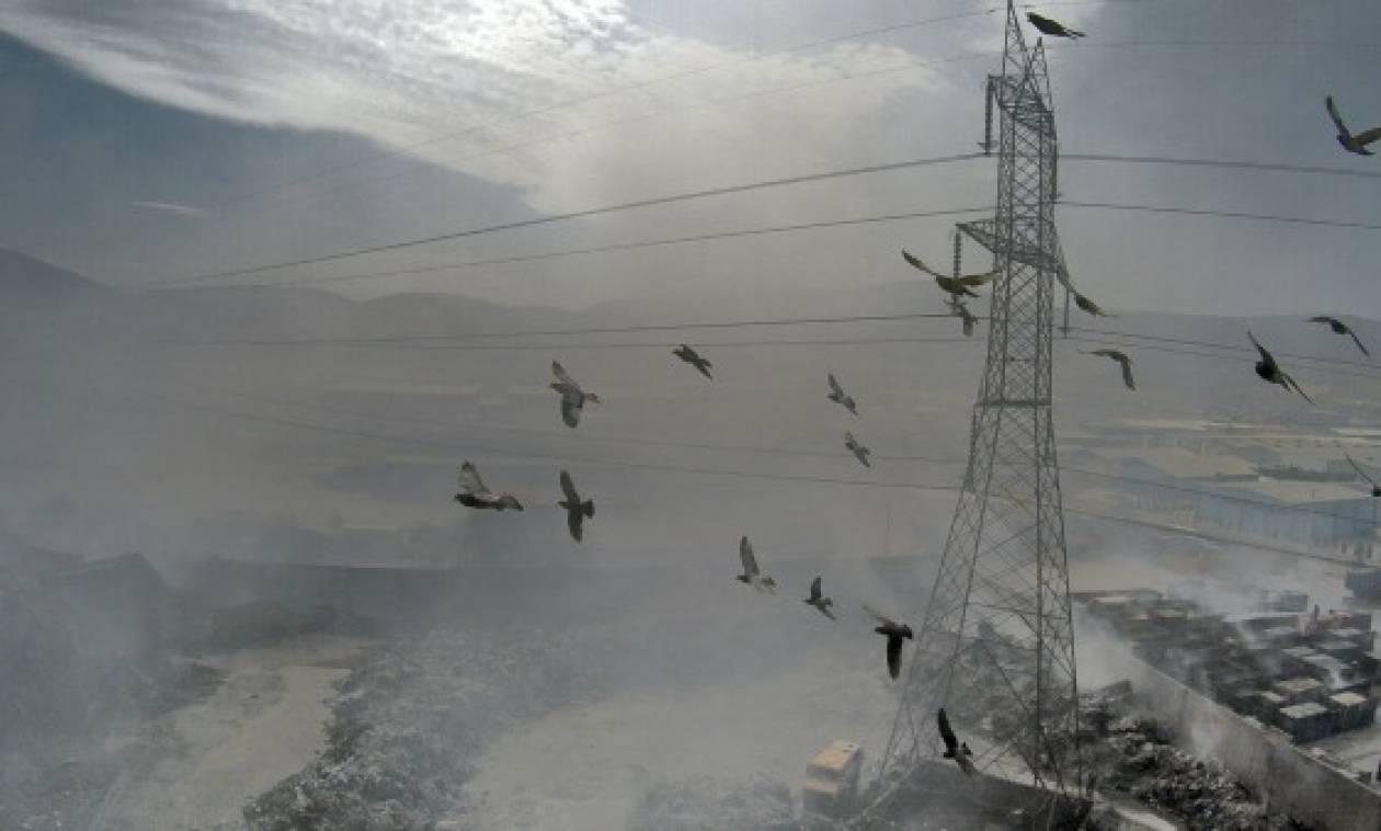 Συναγερμός για το τοξικό νέφος που πνίγει επί πέντε ημέρες την Αττική (pics)