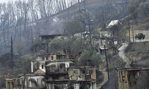 Επιμελητήρια: Ζητούν από τη Βαλαβάνη δεκαετή παράταση των πυρόπληκτων δανείων