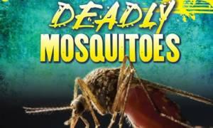 Προσοχή κίνδυνος: Κουνούπια μεταδίδουν νέα θανατηφόρα ασθένεια!