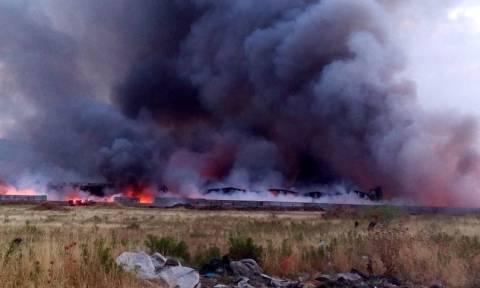 Ασπρόπυργος: Σε εμπρησμό αποδίδει η Πυροσβεστική την πυρκαγιά