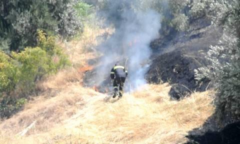 Χανιά: Κυρώσεις «φωτιά» για όσους προκαλούν πυρκαγιά