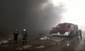 Ασπρόπυργος: Σε εμπρησμό αποδίδει η Πυροσβεστική την πυρκαγιά - Κατασβήστηκε πλήρως