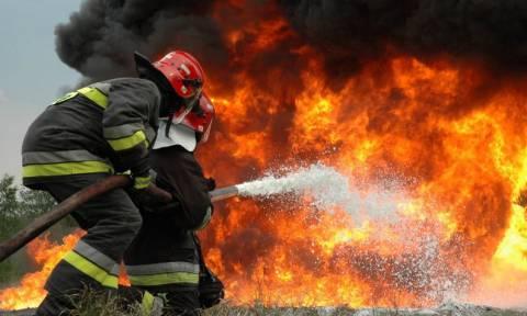 Σε εξέλιξη η μεγάλη πυρκαγιά στα Βίλια