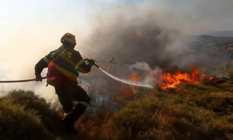 Συναγερμός στην Πυροσβεστική: Μαίνεται πυρκαγιά στους Γαργαλιάνους