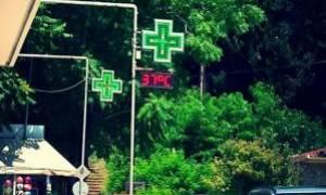 Καύσωνας στα Τρίκαλα: Στους 37 °C ο υδράργυρος