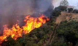 Σβήστηκαν οι φωτιές σε Μεσσηνία και Αργολίδα