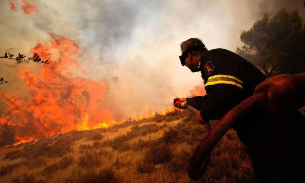 Πυρκαγιά μαίνεται στην Κομίτσα Χαλκιδικής